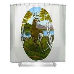 Teddy's Deer Shower Curtain