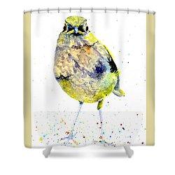 Teenage Robin Shower Curtain