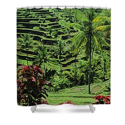 Tegalalang, Bali Shower Curtain by William Waterfall - Printscapes