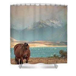 Tekapo Horse Shower Curtain