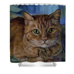 Tela Shower Curtain