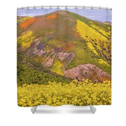Shower Curtain featuring the photograph Temblor Range Color by Marc Crumpler