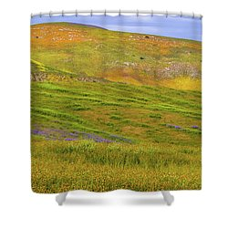 Shower Curtain featuring the photograph Temblor Range Spring Color by Marc Crumpler