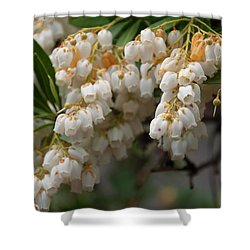 Shower Curtain featuring the photograph Temple Bells Andromedia by Chris Flees