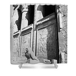 Shower Curtain featuring the photograph Temple Of Horus by Silvia Bruno