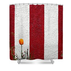 Shower Curtain featuring the photograph Temple Wall by Ethna Gillespie