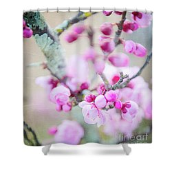 Shower Curtain featuring the photograph Temptation Of Pink by Ivy Ho