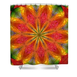 Ten Minute Art 090610-a Shower Curtain by David Lane