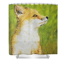 Tender Shower Curtain
