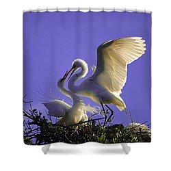 Tender Love Shower Curtain by Kenneth Albin