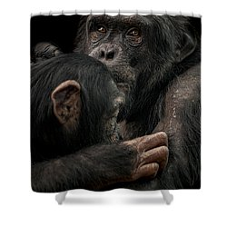 Tenderness Shower Curtain by Paul Neville