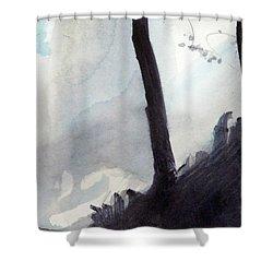 Tequendama Falls Shower Curtain