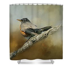 Teressia's Spring Robin  Shower Curtain