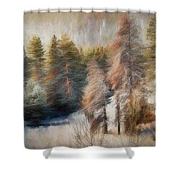 Terra Incognita Shower Curtain
