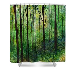 Shower Curtain featuring the painting Terra Verde by Hailey E Herrera