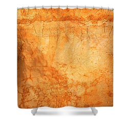 Terracotta Wall Shower Curtain