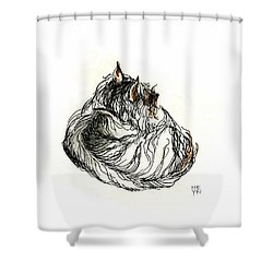 Terrier Sleeping - 1 Shower Curtain
