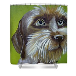 Terrier Waiting Patiently Shower Curtain