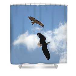 Territory Shower Curtain