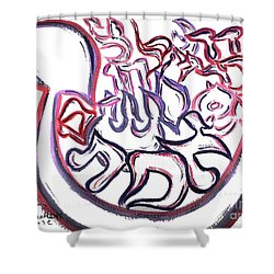 Truth Existance Miracles And More Ab6  Shower Curtain