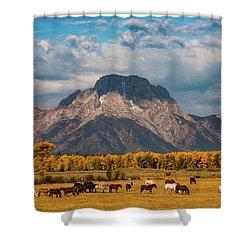 Teton Horse Ranch Shower Curtain