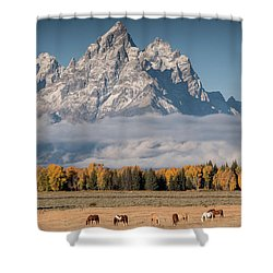 Teton Horses Shower Curtain