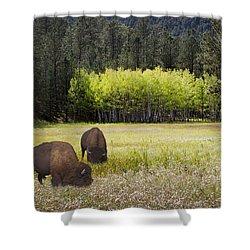 Tetonka Shower Curtain by John Hix