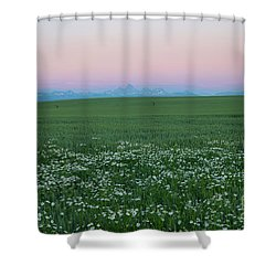 Tetons With Daisies Shower Curtain