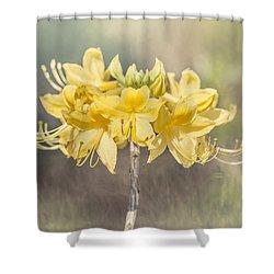 Texas Azalea -textured Shower Curtain