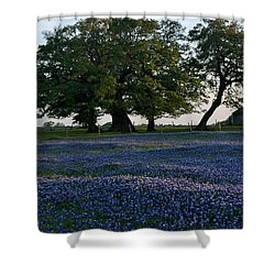 Texas Backroads Shower Curtain
