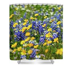 Texas Blue Bonnet  Shower Curtain