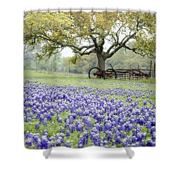 Texas Bluebonnets And Rust Shower Curtain