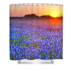 Shower Curtain featuring the photograph Texas Bluebonnets by Keith Kapple