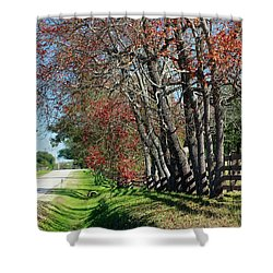 Shower Curtain featuring the photograph Texas Fall by Lori Mellen-Pagliaro