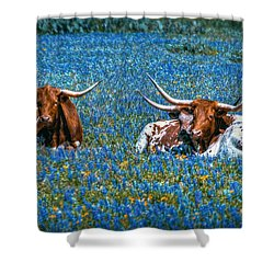 Texas In Blue Shower Curtain