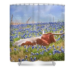Texas Is Longhorns And Bluebonnets Shower Curtain by David and Carol Kelly