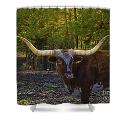 Shower Curtain featuring the photograph Texas Long Horn Bull by Melissa Messick