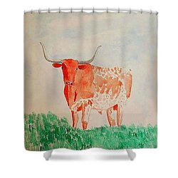Texas Longhorn Shower Curtain by Fred Jinkins