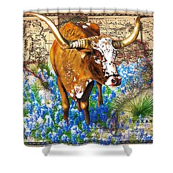 Texas Longhorn In Bluebonnets Shower Curtain