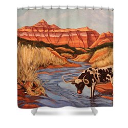 Texas Longhorn In Palo Duro Canyon Shower Curtain