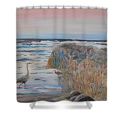 Texas - Padre Island Shower Curtain
