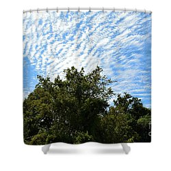 Shower Curtain featuring the photograph Texas Scene - Midday  by Ray Shrewsberry