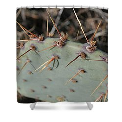 Shower Curtain featuring the photograph Texas Spikes by Laddie Halupa