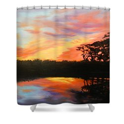 Texas Sunset Silhouette Shower Curtain
