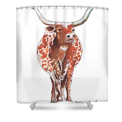 Texas Longhorn Taking The Lead Watercolor Painting By Kmcelwaine Shower Curtain by Kathleen McElwaine