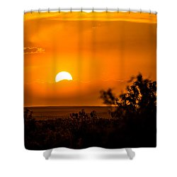 Texas Tangerine Shower Curtain