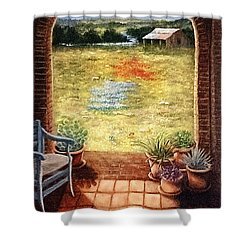 Texas View Shower Curtain