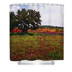 Texas Wildflowers Shower Curtain