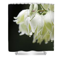 Texas Yucca Shower Curtain