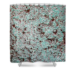 Texture No. 5-1 Shower Curtain